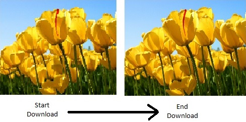 Baseline progressive photoshop